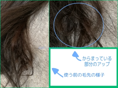 洗い方検証arau編2日目昼・DBゆがみディープリペアマスク使用前の髪の様子。なにかのかたまりみたいなのになった部分がある