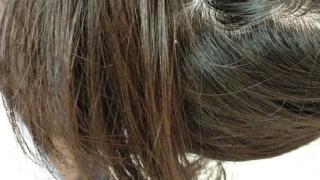 カラシャン検証・使用前の髪の色。根元と毛先の色の比較