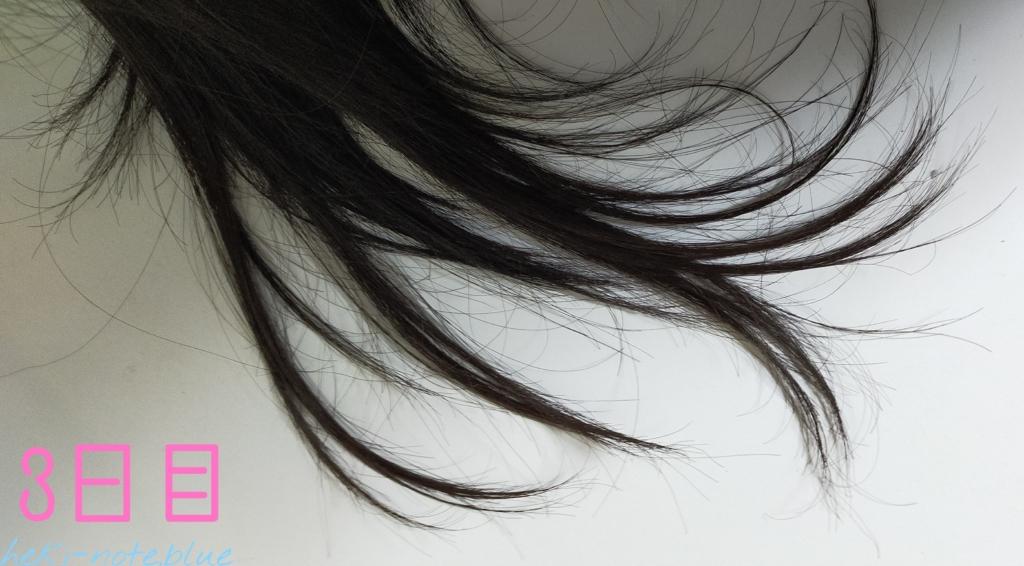 染めてない髪にカラシャンを使ってみる・3日目