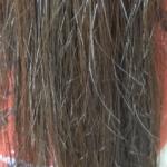 ビオリスボタニカルヘアマスクを使う前の髪の状態・縦向き