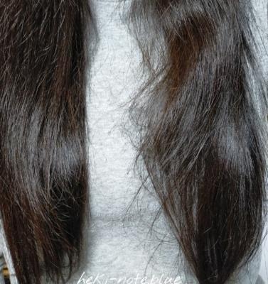 ビオリスボタニカルヘアマスクを使って1日目の髪・ドライヤー乾燥と自然乾燥の比較縦向き